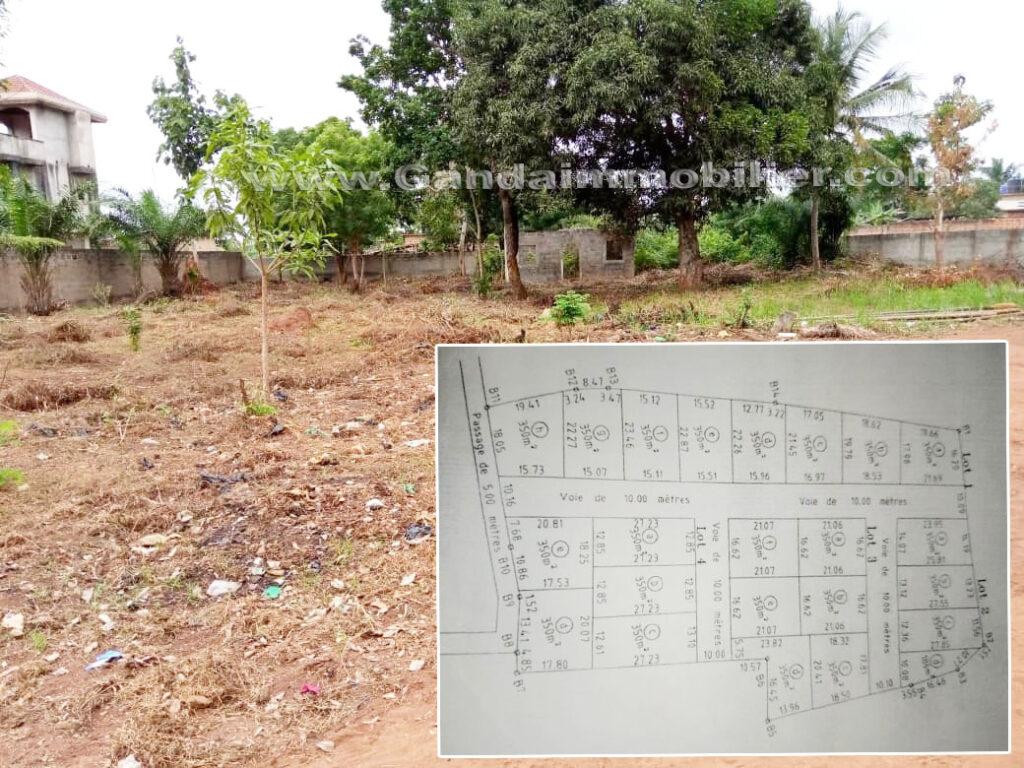 Plusieurs parcelle à vendre à Togba, zone viable et très habitée à Calavi