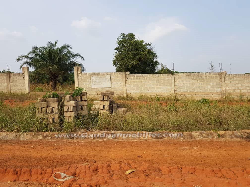 Terrain avec titre foncier à vendre à Glo djigbé