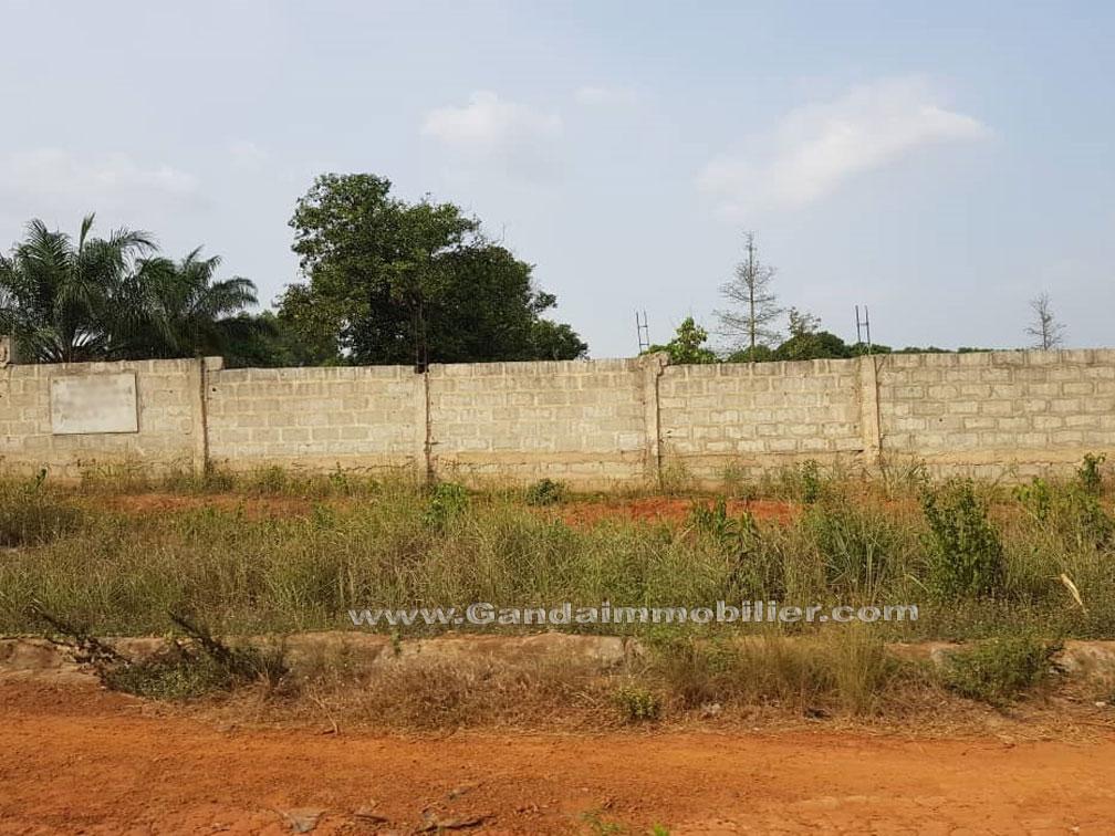 Terrain de 2000 m² à vendre à Glo djigbé Abomey calavi