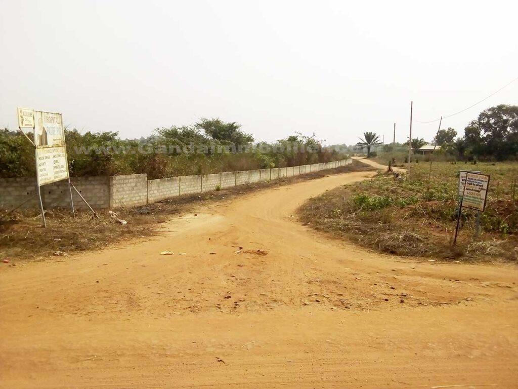 Parcelle en vente non loin du goudron à Glo Djigbe