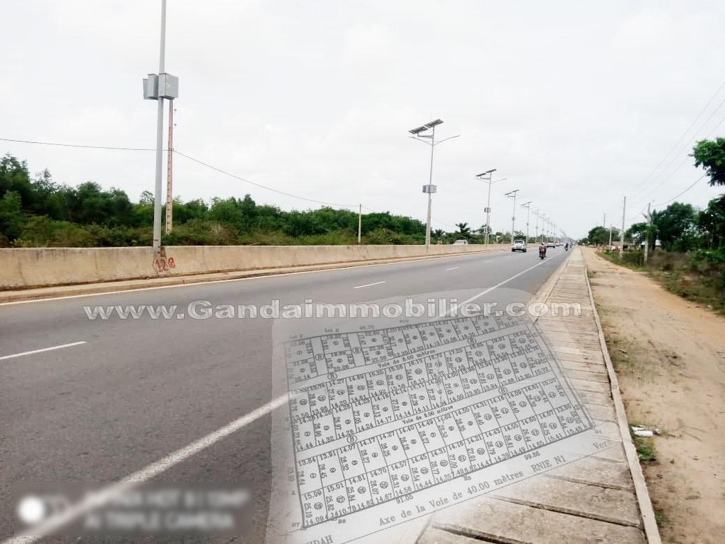 60 parcelles des 400 et 350 m² à Ouidah , domaine à titre foncier au bord du goudron