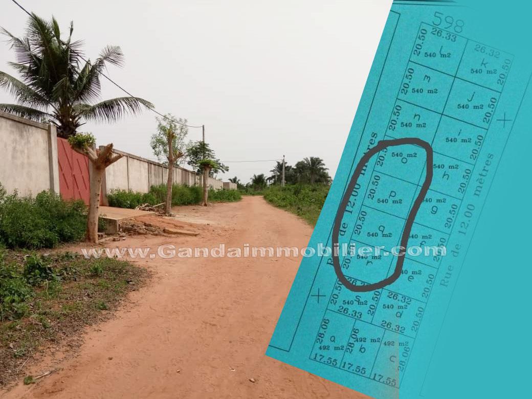 Des parcelles de 544 m² à moins d'un km du marché de Gros à la Zopah adjagbo Calavi