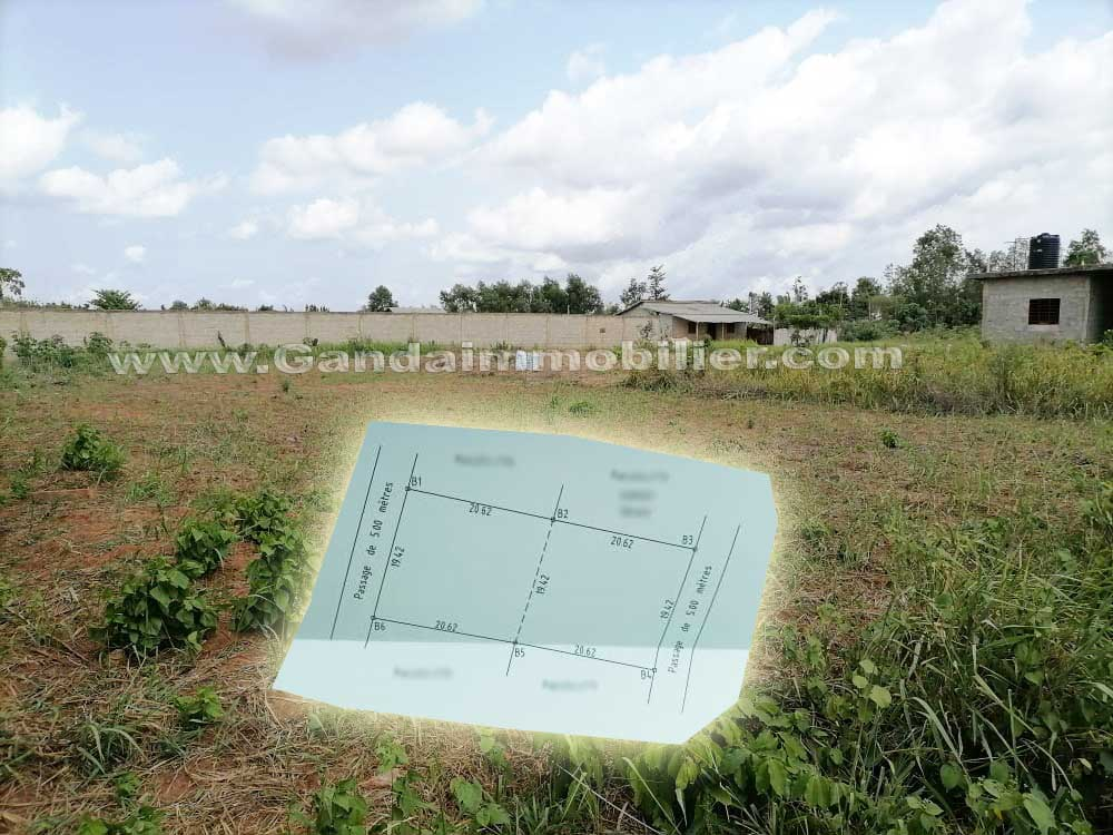 terrain à vendre avec titre foncier à glo djigbé